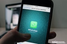 Todo sobre WhatsApp Business